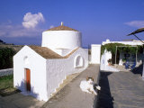 Cat Beside Church in Lindos, Greece Photographic Print by Ian West