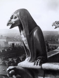 Statue Depicting a Fantastic Eagle on the Exterior of the Cathedral of Notre-Dame, Paris Photographic Print