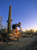 Mountain Biker on Trail near Tucson, Arizona, USA Photographic Print by Chuck Haney