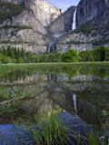 Yosemite Falls, California, USA Photographic Print by Roy Toft