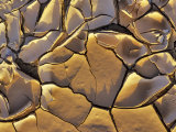 Mud Cracks, Death Valley National Park, California, USA Stampa fotografica di Chuck Haney