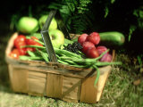 Fruit and Vegetables from the Garden, Kent Photographie par David Tipling