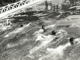 Swimming Race Photographic Print