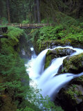 Sol Duc Falls, Washington, USA Photographic Print by Mark Hamblin