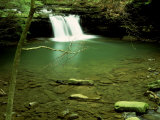 Blue Hole Falls on the Little Fiery Gizzard Creek, TN Photographic Print by Willard Clay