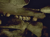 Lines of Skulls in Cave, Indonesia Photographic Print by Michael Brown