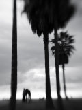Venice Beach, Venice, Los Angeles, California, USA Papier Photo par Walter Bibikow