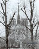 L'Abside de Notre-Dame, Paris Posters by Gy Zarand