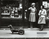 Le Chien a Roulettes, c.1977 Affiche par Robert Doisneau