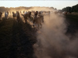 The Horses Run Home Through a Cloud of Dust Photographic Print by Sisse Brimberg