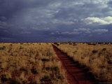 Dirt Road in a Flat Landscape under a Stormy Sky Photographic Print by Medford Taylor
