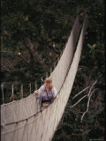 A Biologist Observes the Forest Canopy by Walking Along a Suspended Walkway Photographic Print
