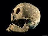 A Skull with a Bronze Arrowhead Embedded in the Bone Fotografisk tryk af O. Louis Mazzatenta