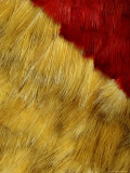 Traditional Hawaiian Feather Cape Composed of Feathers from Native Birds Photographic Print by Chris Johns