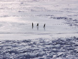 Skaters on the Frozen Lake Photographic Print by Dean Conger