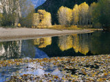 Autumn View Along the Merced River Photographic Print by Marc Moritsch
