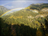 A Rainbow Arches Above an Evergreen Forest in the San Juan Mountains Photographic Print by Marc Moritsch