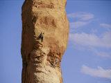 Climbers Head up Dark Angel Photographic Print by Bill Hatcher