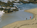 A Woman and Her Two Labrador Retrievers Run Along a Rocky Shoreline Photographic Print by Roy Toft