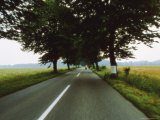 Road through the German countryside Lmina fotogrfica por Cotton Coulson