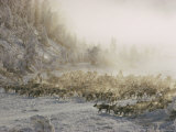 Yakut People Herding Reindeer Photographic Print by Dean Conger