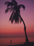 A Caribbean Beach Photographic Print by O. Louis Mazzatenta