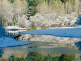 The Merced River and Surrounding Landscape after a Snowfall Photographic Print by Marc Moritsch