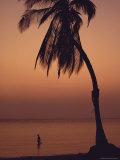 A Caribbean Beach Photographic Print