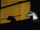 Low Sunlight Casts a Shadow of a Rocking Horse onto a Door Photographic Print