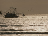 A Silhouetted Fishing Boat Hauls in a Net on a Silvery Sea Photographic Print by Jodi Cobb