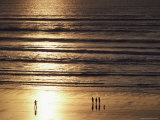 A Setting Sun Casts Golden Light over a Sandy Beach Photographic Print by Robert Madden