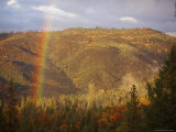 A Rainbow Arches over a Clearcut in the Stanislaus National Forest Photographic Print by Phil Schermeister
