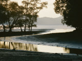 View of a Small Creek Emptying into a Bay Photographic Print by Mattias Klum