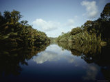 View of a Rain Forest River Photographic Print by Mattias Klum