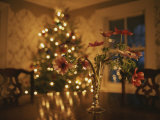 Floral Centerpiece with a Lit Christmas Tree in a Dining Room Photographic Print by Roy Gumpel