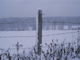 A Wire Fence Cordons off a Snow-Covered Field Photographic Print by Roy Gumpel