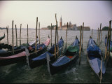 Gondolas at Anchor Line a Shore Photographic Print by Ed George
