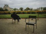 A Man Reads in the Tuileries Gardens Lámina fotográfica por Touzon, Raul
