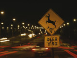 A Deer-Crossing Sign in the Middle of Roosevelt Boulevard Photographic Print by Raymond Gehman