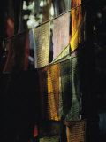 Buddhist Prayer Flags Hang in the Trees in Darjeeling Fotografie-Druck von Ed George