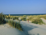 A Beachgoer Walks on Sand Dunes Towards the Beach Photographic Print by Steve Winter