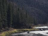 Fishing for Steelhead on the Salmon River Photographic Print by Joel Sartore