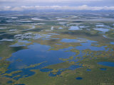 An Aerial View of the Mackenzie River Delta Photographic Print by Raymond Gehman