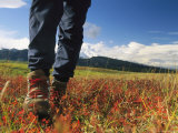 Close View of Womans Hiking Boots with Meadow and Mountains Photographic Print by Mark Cosslett
