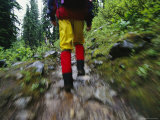 A Blurred View of a Hiker Trekking Through Yoho National Park Photographic Print by Michael Melford