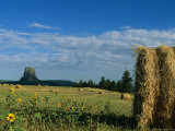 A View of Devils Tower from Across a Hay Field Photographic Print by Michael S. Lewis