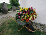 A Large Arrangement of Flowers in a Wheel Barrow Photographic Print by Sisse Brimberg