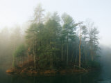 Early Morning Fog in the Trees Around Otter Lake Photographic Print by Raymond Gehman