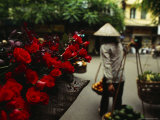 A Fruit Vendor in a Conical Hat Passes by Red Roses for Sale Photographic Print