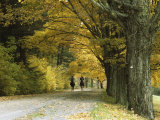 Autumn View of Horseback Riders on a Tree-Lined Lane Photographic Print by Bill Curtsinger